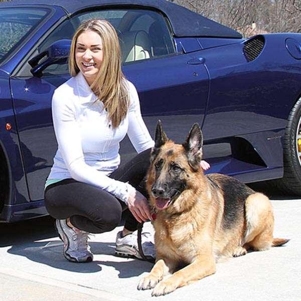 Family Friendly Protection Dog from Paladin K9